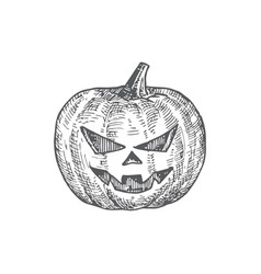 hand drawn halloween scary pumpkin vector image
