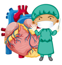 Human heart with a doctor wearing mask cartoon vector