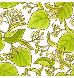 linden pattern vector image
