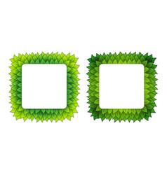 outline square leaves frames vector image
