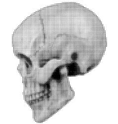 skull halfton profile vector image