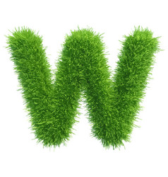Small grass letter w on white background vector