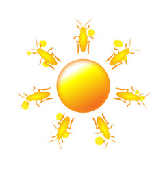 sun icon with rays out of cute cockroach or vector image