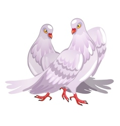 Two pink pigeon Symbol of love vector image