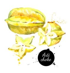 Watercolor hand drawn fresh Yellow fruit carambola vector image