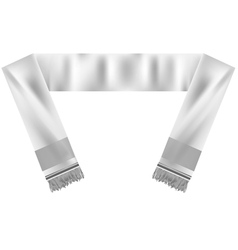 football scarf vector image vector image