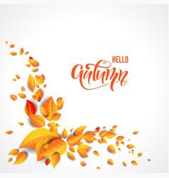 beautiful fall leaves vector image