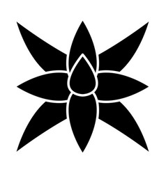 Fox tail agave glyph icon vector