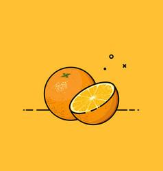 orange open by half vector image