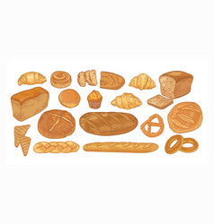Set breads and baked products various types vector
