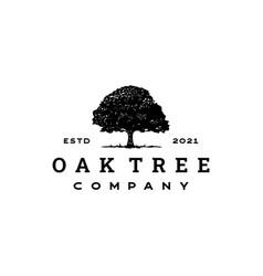 Vintage retro oak banyan maple tree service logo vector