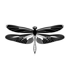 Black dragonfly icon isolated on white vector