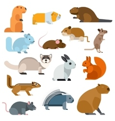 Cartoon rodents animals set vector image