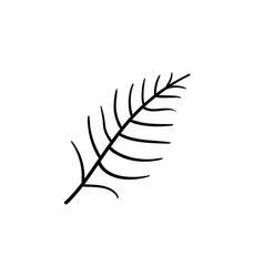 fern leaf hand drawn sketch icon vector image