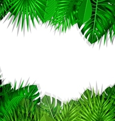 Frame Tropical Leaves Summer Background vector image