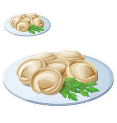 pelmeni meat dumplings cartoon icon vector image