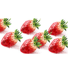 strawberry pattern watercolor fresh fruit textures vector image