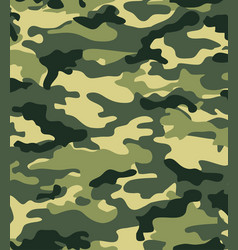 camouflage background for design and prints vector image