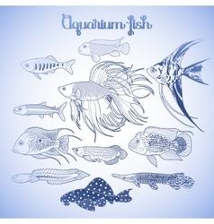 Graphic aquarium fish set vector