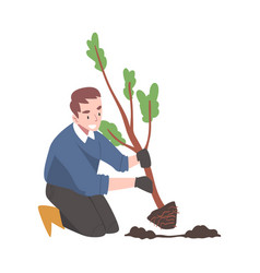 Young man in rubber garden boots planting tree vector