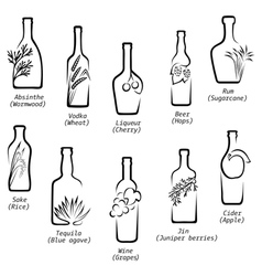 Conceptual icons of alcohol vector image