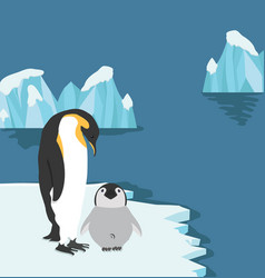 Emperor penguins with chick on ice floe vector