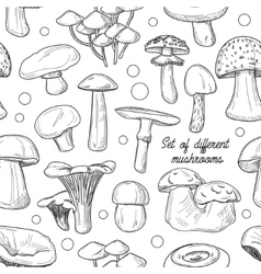 Set of different mushrooms pattern vector