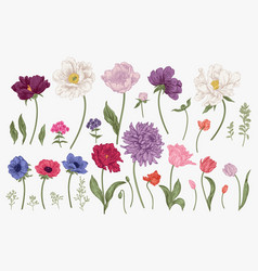 Set with spring flowers vector