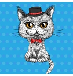 closeup portrait of the British cat hipster vector image