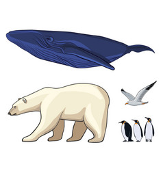 colorful arctic animals set vector image