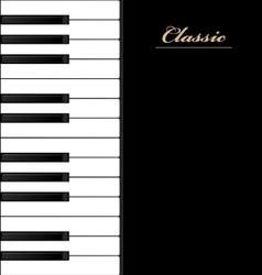 Top view piano keys Musical instrument vector image vector image