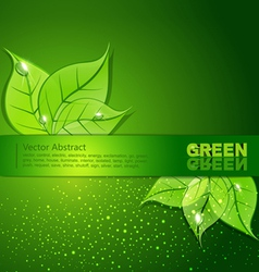 green background with leaves and drops of dew vector image vector image