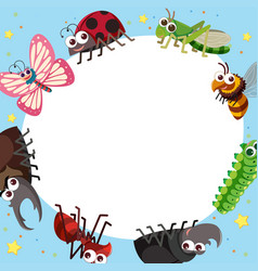 Border template with different types of bugs vector