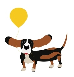 Dog basset hound with a balloon isolated on white vector