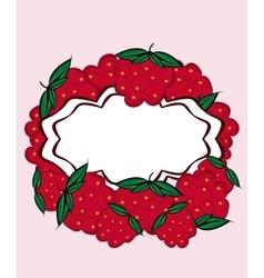 hand drawn label raspberry vector image