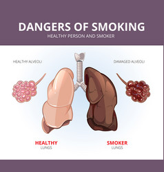 Lungs and alveoli a healthy person smoker vector