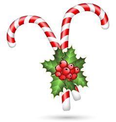 Two candy canes with holly on white vector image