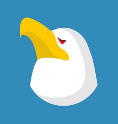 bald eagle head isolated bird an eagles face on vector image