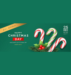 Christmas candy cane and holly pine leaves vector