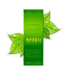 green leaves banner vector image