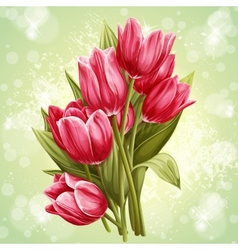 Image a bouquet flowers pink tulips vector