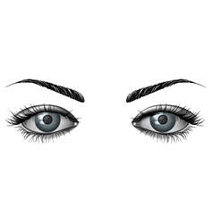 Photorealistic human female eyes close up vector image