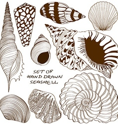 set isolated seashell icons vector image