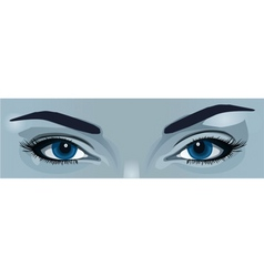blue eyes vector image