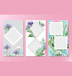 floral social media stories background vector image