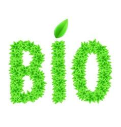 Natural leaf 02 vector image