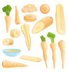 Parsnip icons set cartoon style vector