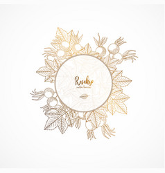 Gold vintage with rosehip engraved vector