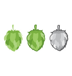 green hops set vector image