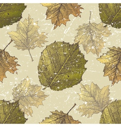 hazel leaves seamless vector image
